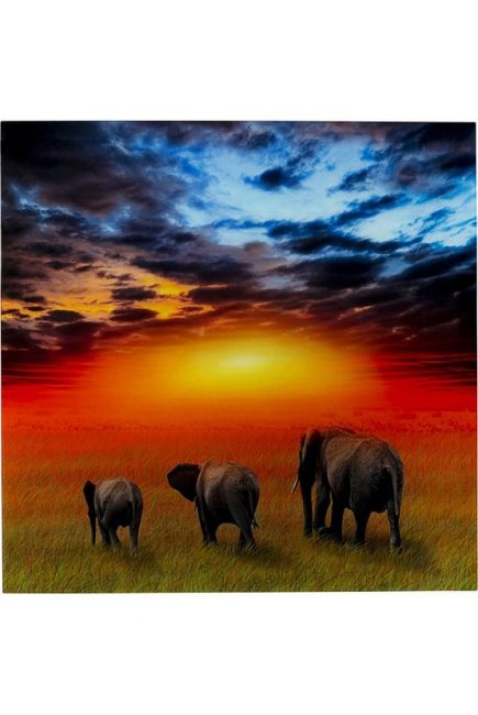 Slika Savanne Elefants 51813